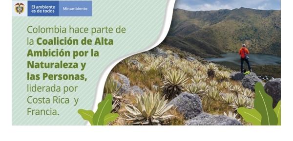 Colombia junto a 50 países se comprometen a la protección del 30% de las áreas terrestres y marítimas del planeta para el año 2030 en el lanzamiento de la Coalición de la Alta Ambición por la Naturaleza