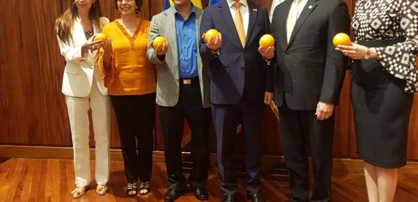 """En Honduras el Consejero Presidencial para Asuntos Económicos y Estratégicos de Colombia,  Felipe Buitrago, presentó la conferencia """"Exprimiendo la Economía Naranja"""""""
