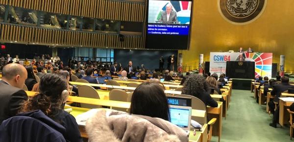 Colombia participó en el 64º período de sesiones de la Comisión de la Condición