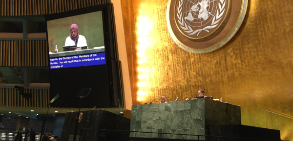 Colombia participa en el 59° periodo de sesiones de la Comisión de Desarrollo Social