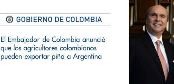 Embajador de Colombia anunció que los agricultores colombianos pueden exportar piña a Argentina