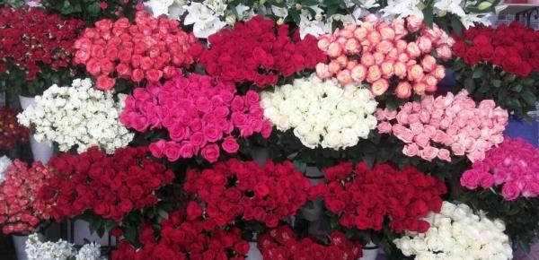 Llegada de flores colombianas a Azerbaiyán en 2018