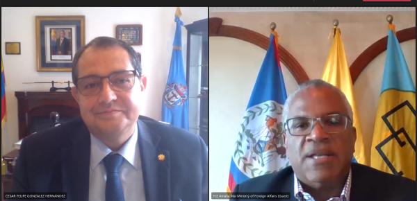 Audiencia virtual entre el Embajador de Colombia en El Salvador concurrente para Belice y el Ministro de Asuntos Exteriores