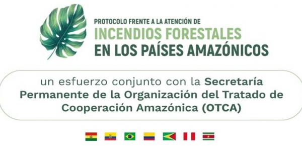 Los países del Pacto de Leticia lanzan Protocolo para el Manejo de Incendios Forestales