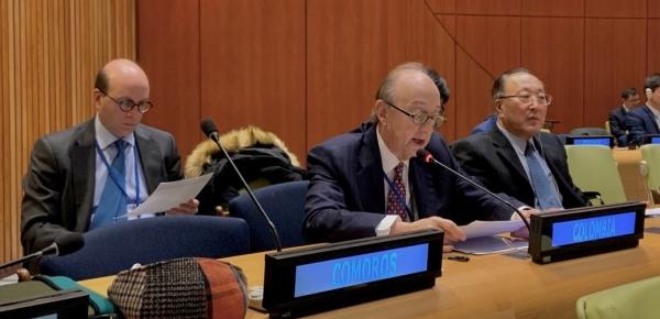 Colombia participó en la primera sesión de negociaciones intergubernamentales sobre reforma al Consejo de Seguridad ONU