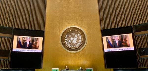 Colombia plantea cinco compromisos para que la recuperación económica posterior al Covid 19 sea verde y justa, y para cumplir los ODS